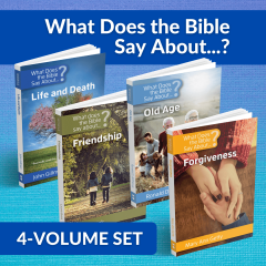 What does the Bible Say About Set